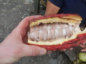 Ochutnal jsem i oblíbené Kakao